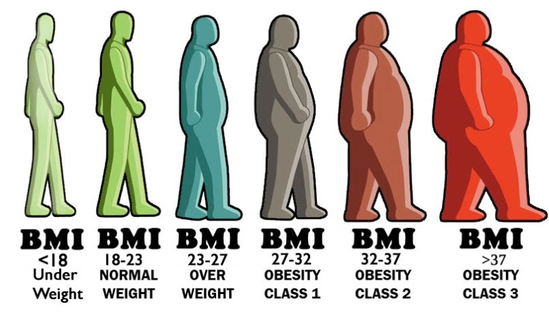 BMI healthy body