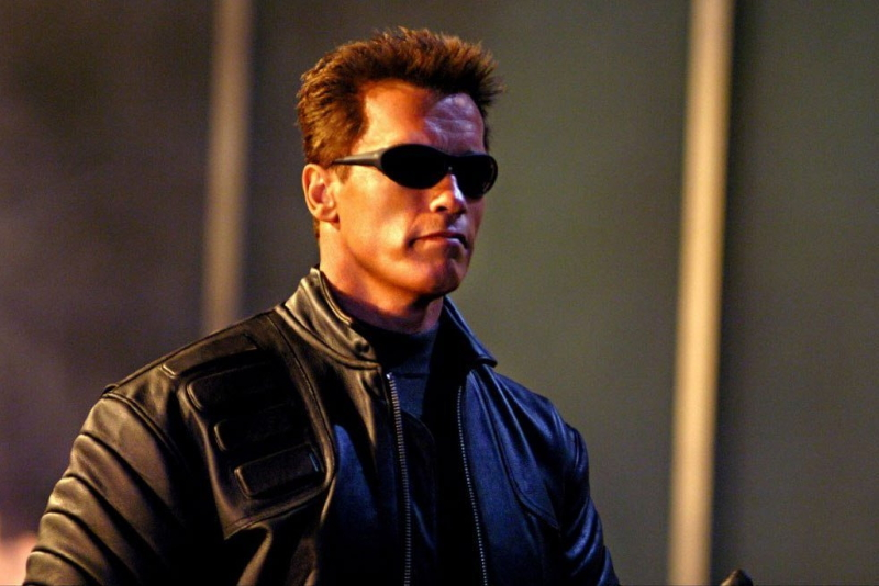 terminator 3 arnold highest-paid actor